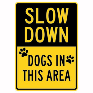 Slow Down Dogs in This Area