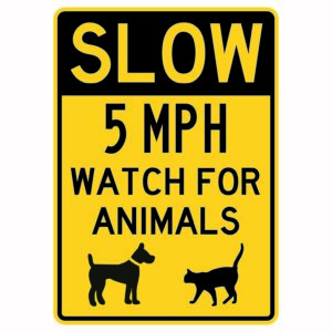 Slow 5mph Watch for Animals