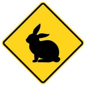 Bunny Crossing Xing Sign