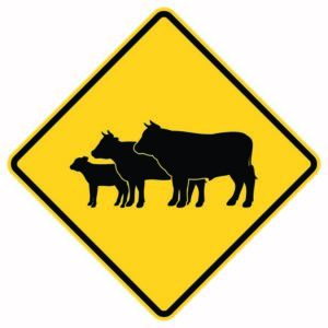 Cattle Crossing Xing Sign