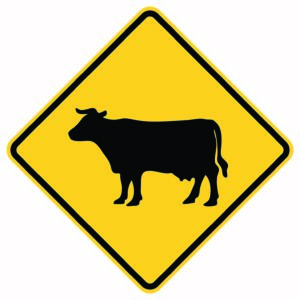 Cattle Crossing Xing Sign Version 2