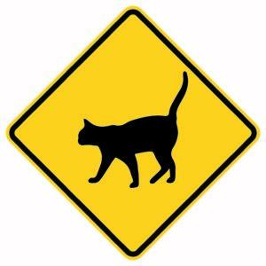 Cat Crossing Xing Sign