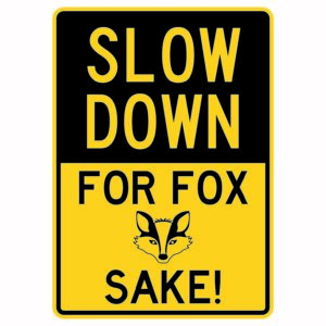 Slow Down for Fox Sake