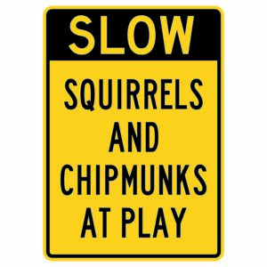 Slow Squirrels and Chipmunks at Play
